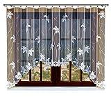 HAFT Gardine; Store; Vorhang transparent, elegant weiß, Kräuselband 160x300 cm