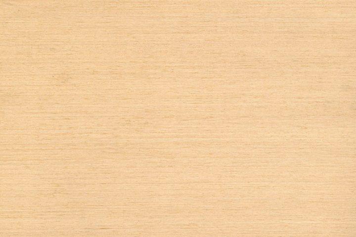 Abachi Holz