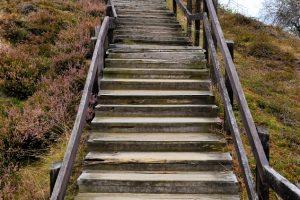 Alte Holztreppe sanieren