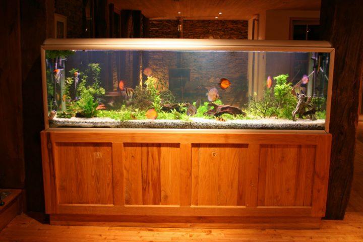 Aquarium Unterschrank bauen
