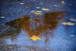 Asphalt legen bei Regen