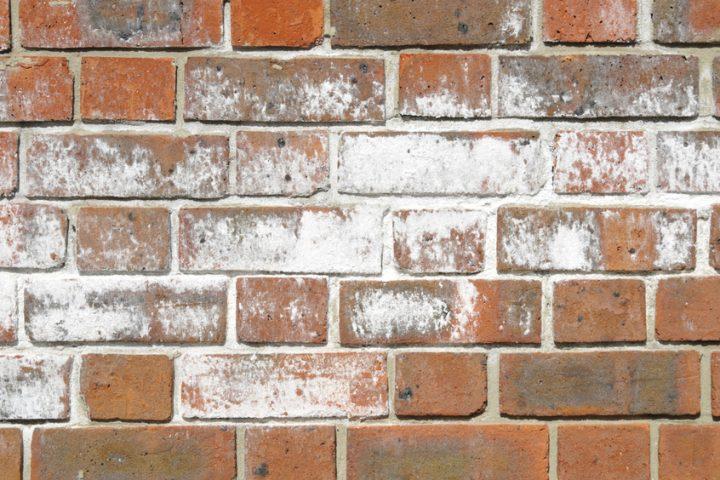 Gut bekannt Ausblühungen im Mauerwerk » Ursachen und Maßnahmen DZ42