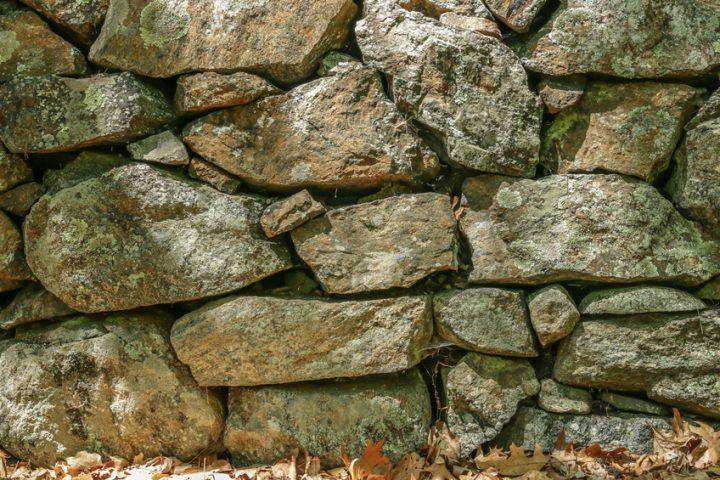 Naturstein blüht aus