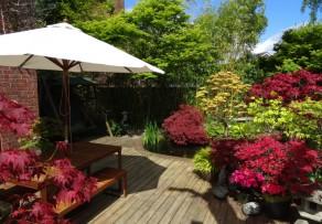 bankirai terrasse reinigen schonend und effizient. Black Bedroom Furniture Sets. Home Design Ideas