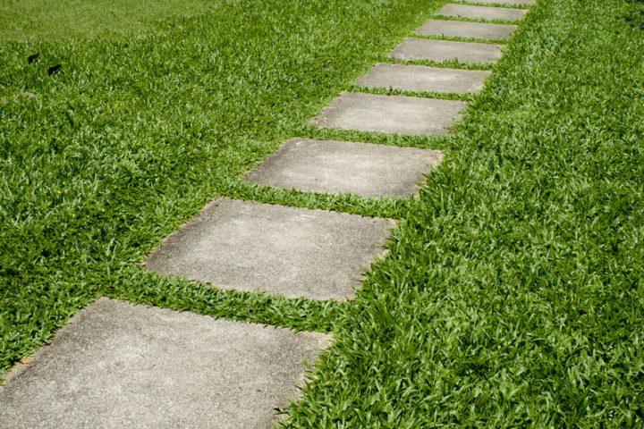 Betonplatten Garten