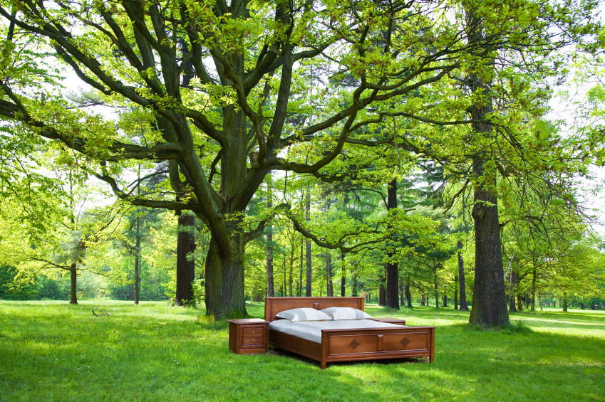 bett im garten so machen sie ihren traum wahr. Black Bedroom Furniture Sets. Home Design Ideas