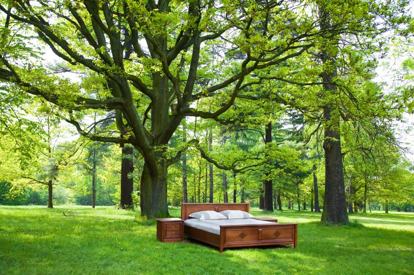 Selbst Einfach Ein Bett Für Den Garten Bauen