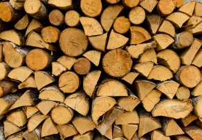 Birkenholz verbrennen eignet es sich als feuerholz - Heizwert holz tabelle ...