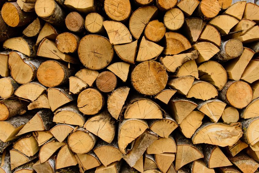 Birke Holz birkenholz verbrennen eignet es sich als feuerholz