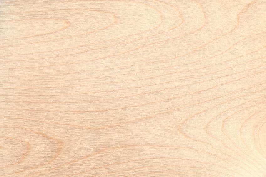 birkenholz eigenschaften verwendung und preise. Black Bedroom Furniture Sets. Home Design Ideas