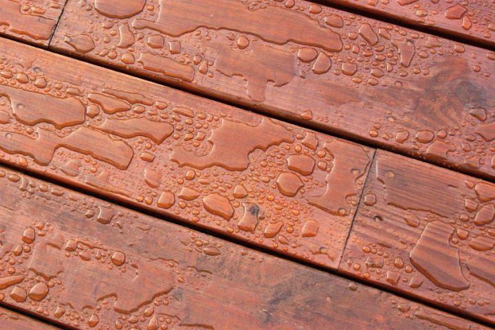 Bongossi Holz Preise