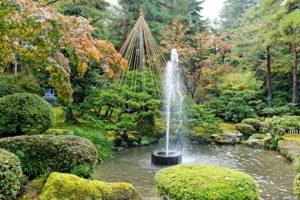 Brunnen bepflanzen