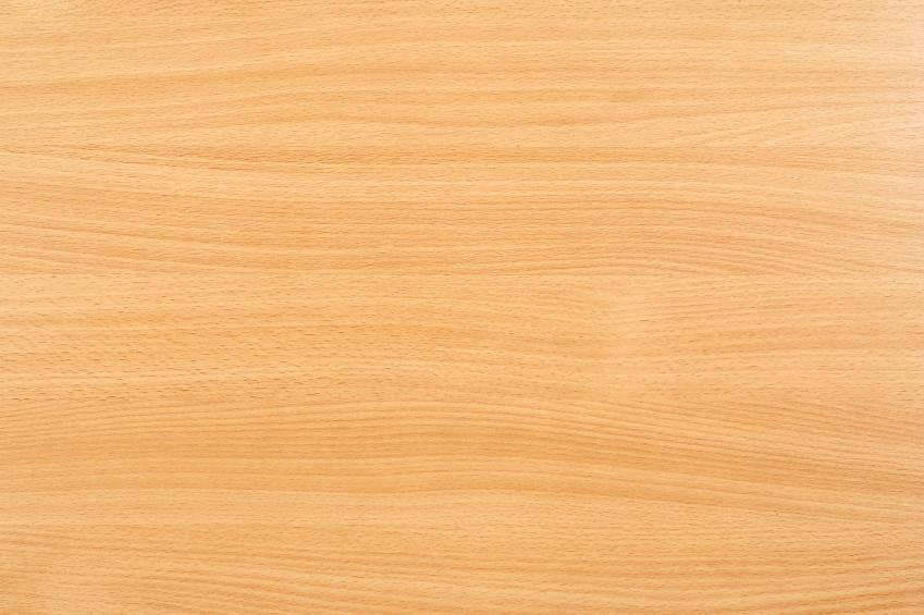 Buchenholz » Preise und Preisfaktoren