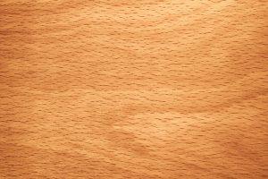 Buchenholz erkennen
