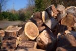 Buchenholz spalten