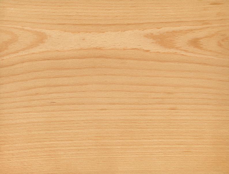 Buchenholz 187 Eigenschaften Verwendung Und Preise