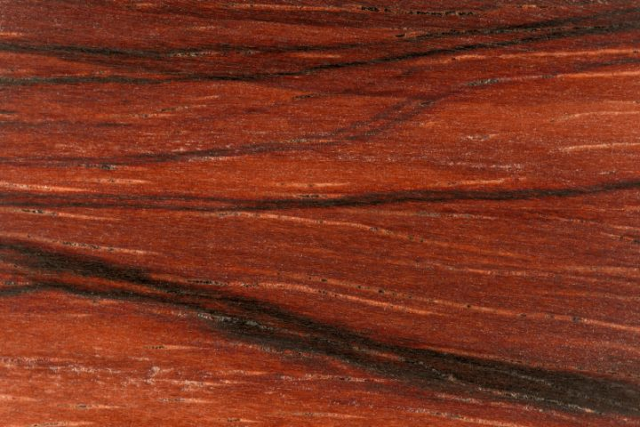 Cocobolo Holz