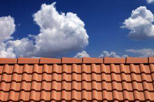 Dach Preise