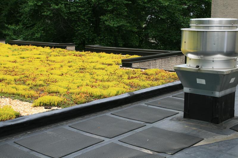 Dachbegrünung für die Garage – nicht nur ökologisch