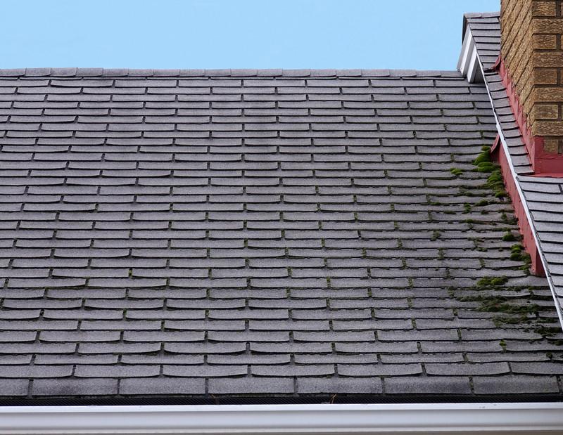 Lieblings Dachentmoosung » Die besten Möglichkeiten im Überblick &WP_55