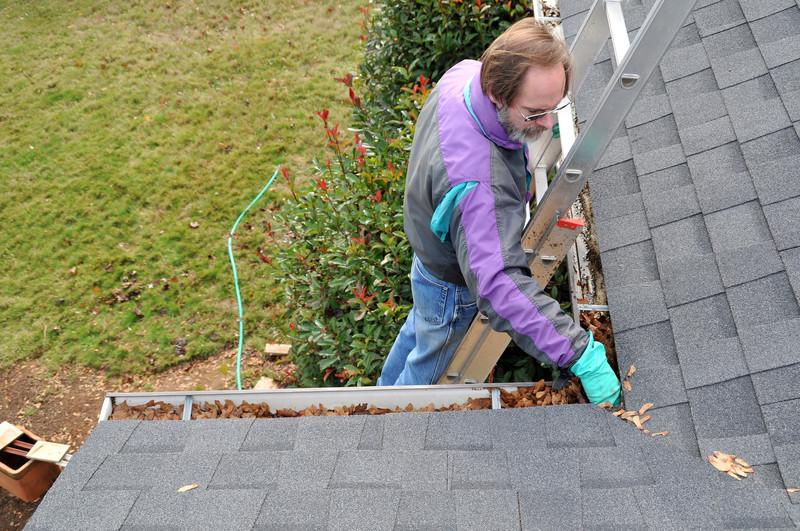 Welche Kosten fallen für die Dachrinnenreinigung an?