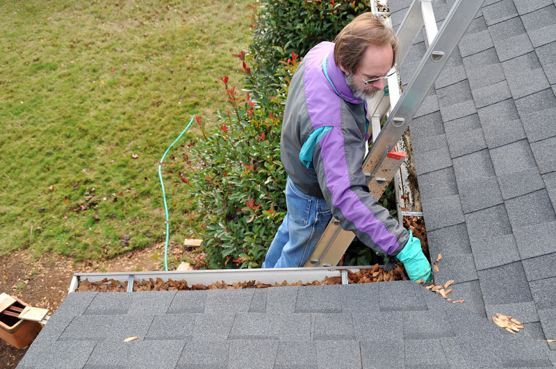 Zugänglichkeit bestimmt Preise der Dachrinnenreinigung