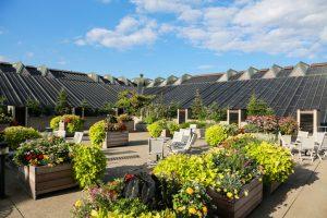 Dachterrasse Terrassenplatten