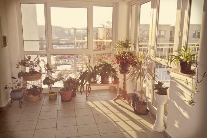 Dachterrasse zu Wintergarten umbauen