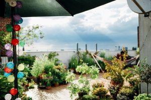 Dachterrasse gestalten