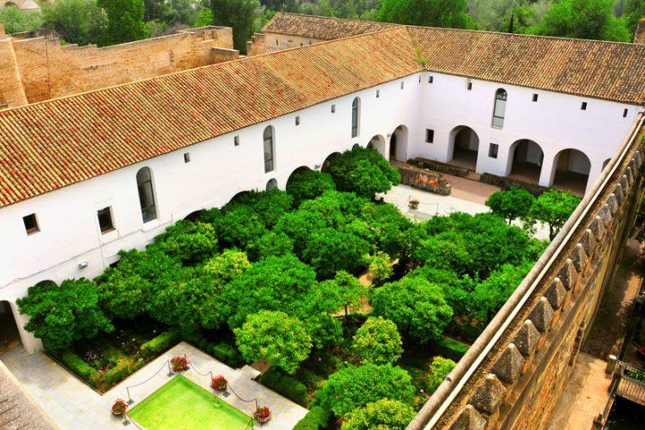 Dachterrassenbepflanzung