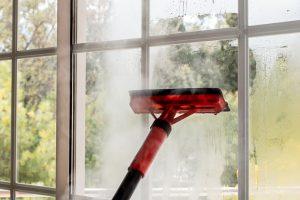 Dampfreiniger Fensterreinigung