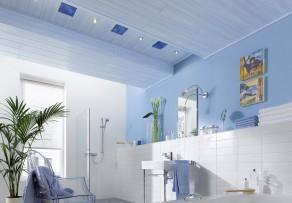 deckenpaneele f r den feuchtraum wo kaufen und wie teuer. Black Bedroom Furniture Sets. Home Design Ideas