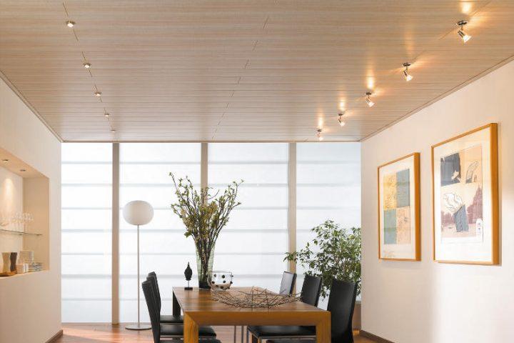Extrem Deckenpaneele streichen » Tipps zu allen Materialien OA68