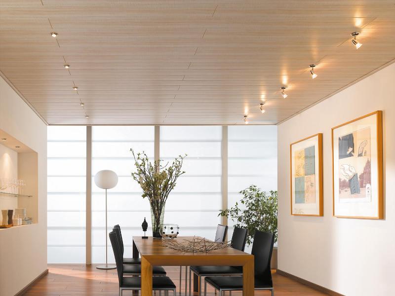 Wohnzimmer Paneele, deckenpaneele einfach montieren - so wird's gemacht, Design ideen