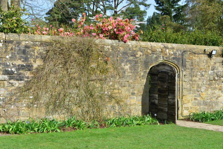Gartenmauer Versickerung
