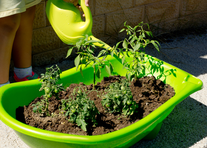 Drainage bei pflanzen warum ist sie so wichtig - Drainage garten lehmboden ...