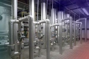 Enterokokken im Trinkwasser
