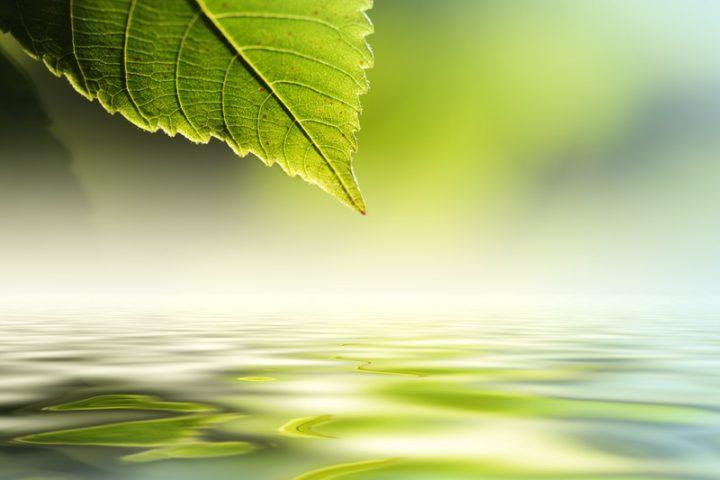 Entspanntes Wasser