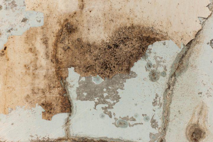Feuchtes Mauerwerk » So reagieren Sie richtig