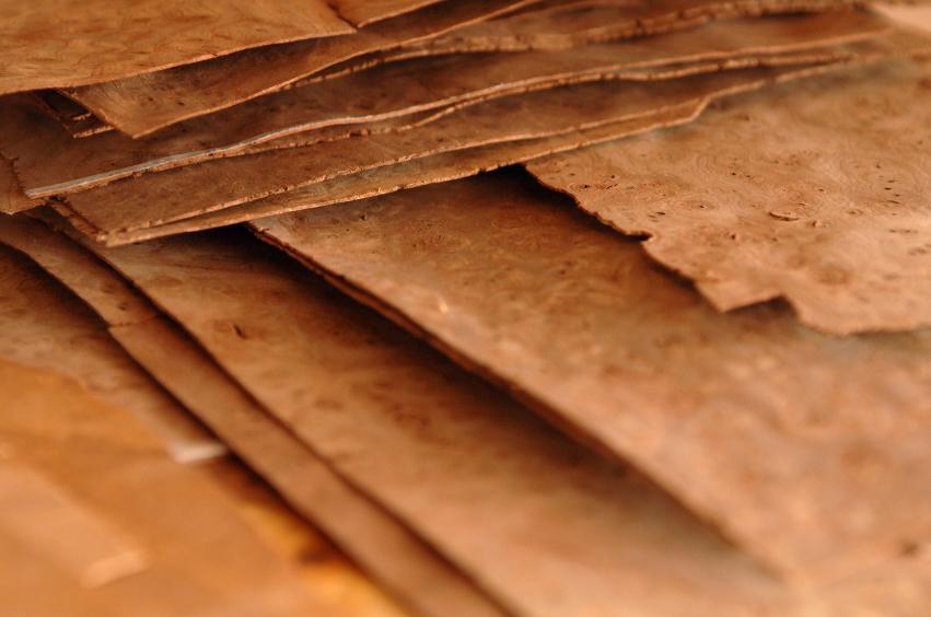 Furnier Löst Sich Vom Holz furnier biegen das sollten sie wissen