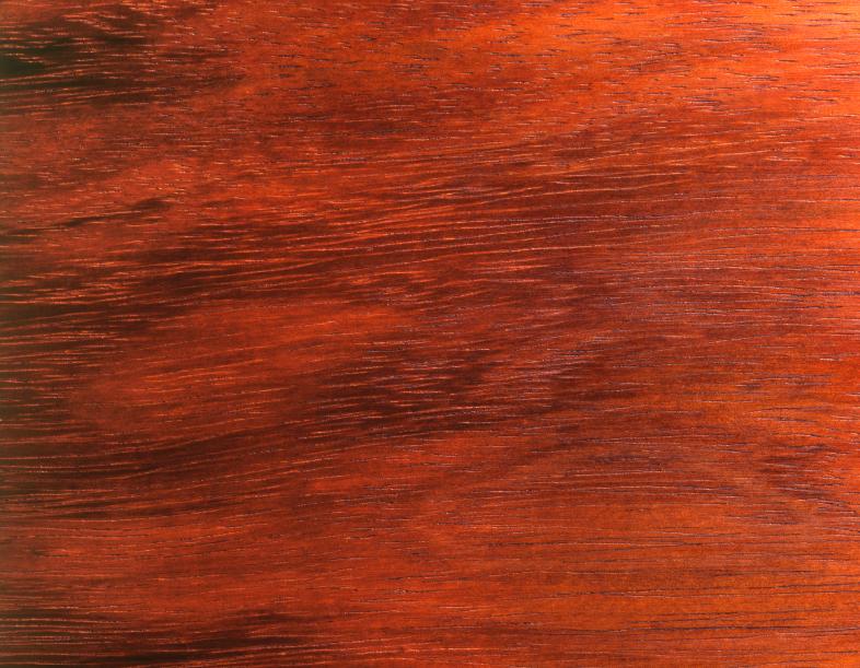 Furnier Löst Sich Vom Holz furnier leimen professionell und dauerhaft