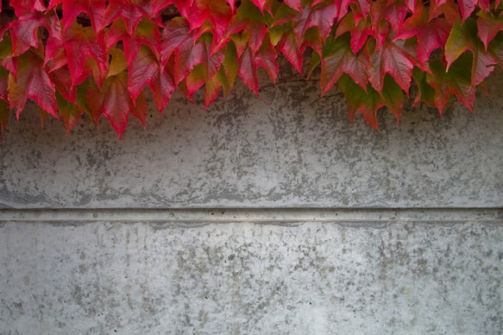 Gartenmauer Beton