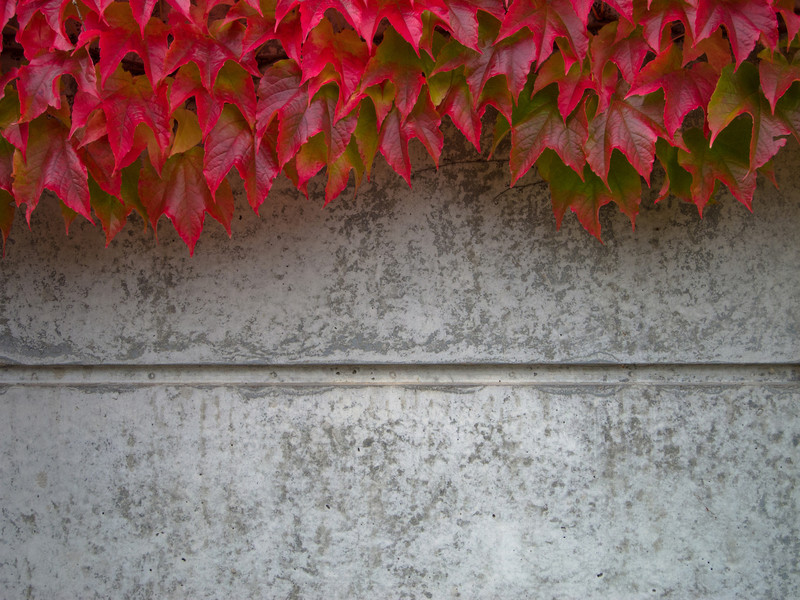 gartenmauer selber mauern » anleitung in 3 schritten,