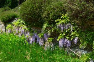 Gartenmauer Hanglage