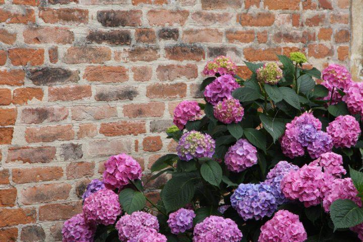gartenmauer selber mauern » anleitung in 3 schritten, Gartenarbeit ideen