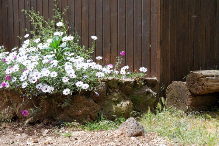 Gartenmauer verkleiden