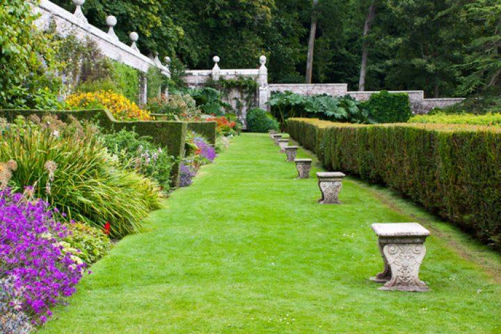 Gartenmauer verschönern
