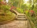 Gartentreppe am Hang – worauf zu achten ist