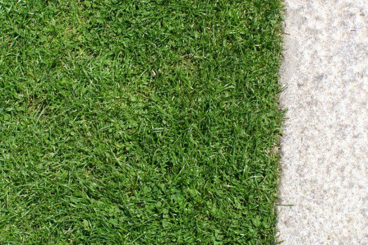 Granit Rasenkantensteine Preise