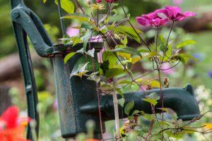 Handpumpe Garten